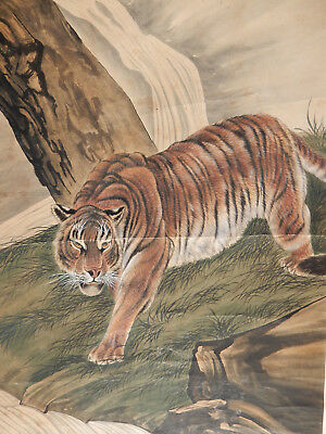 """Chinese old large painting scroll """" sign """" TIGER '"""