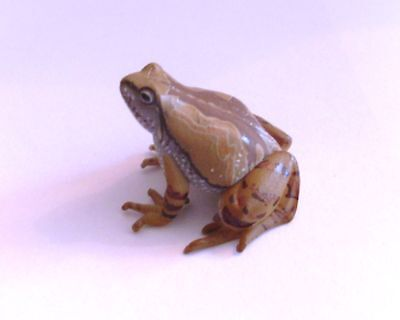 RARE Takara Yujin Kaiyodo Ornate Narrow Mouthed Frog Figure