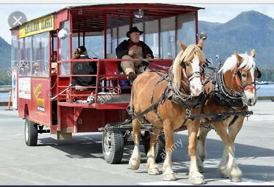 Trolley - horse, tractor, or truck drawn
