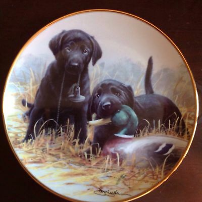 "Beginners Luck ""Puppy"" Franklin Mint Collector Plate By J Killen 21cm Ex. Cond."