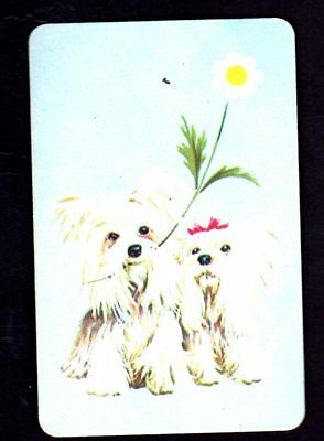 Vintage Swap Card - Gorgeous White Puppies with Flower (BLANK BACK)