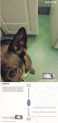 Sony Cyber Shot Dsc Ps Camera Unused Advertising Colour Postcard
