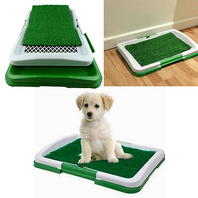 Dog Puppy Pet Toilet Trainer Absorbent Mat Potty Patch Pads House Litter Tray