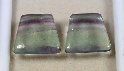 29.60 Cts. 100 % Natural  Pair Of  Fluorite  Fancy Cabochons  Loose  Gemstones