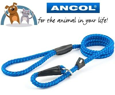 Ancol Blue Strong Nylon Slip Lead Collar 1.50m x 12mm Max Weight 50KG