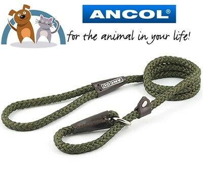 Ancol Green Strong Nylon Slip Lead Collar 1.20m x 12mm Max Weight 50KG