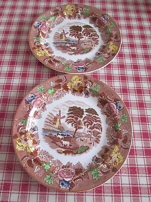 Pair Of Rare & Vintage Enoch Wood's English Scenery Plates