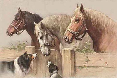 Border Collie & JRT Dogs & Horses Carl Reichert pre1918 - LARGE BLANK NOTE CARDS