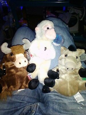 RARE COCA Cola International 3 X Beanie Babies 1998 Plush Animals ... a5f8aa61f1d8
