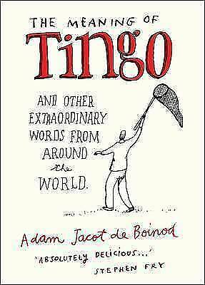 THE MEANING OF TINGO, ADAM JACOT DE BOINOD, Very Good Book