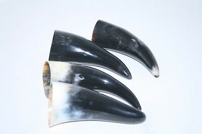 4 Cow horn tips ....  x4b83 ... Natural colored polished cow horns.,..