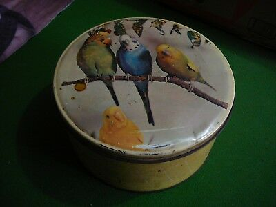 willow  vintage budgerigar tin
