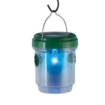 Solar Wasp Trap Catcher, by Collections Etc