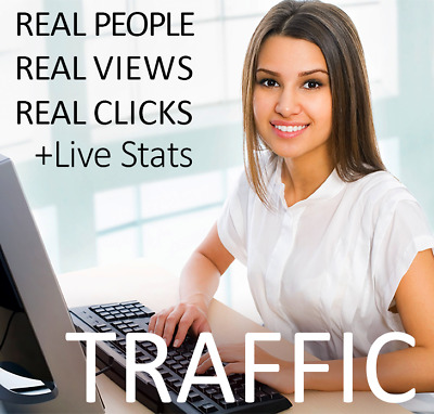 TARGETED WEB TRAFFIC website views from networks 100 000 real people with Stats