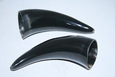 2 Cow horn tips ....  x2e83 ... Natural colored polished cow horns.,..