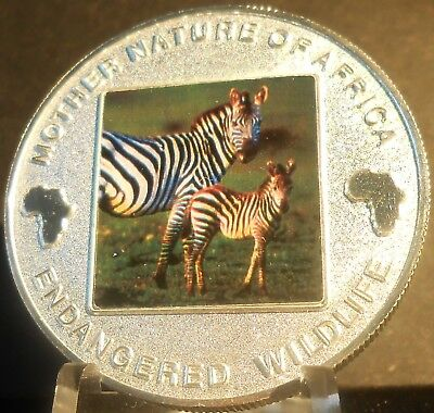 Malawi Mother Nature Of Africa Zebra  2004  10 Kwacha Proof Color Crown
