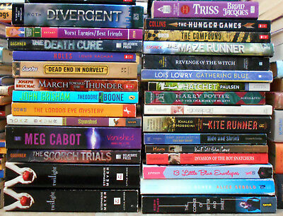 Lot of 7 Young Adult Teen Childrens Chapter AR Books: UNSORTED MIX / Random