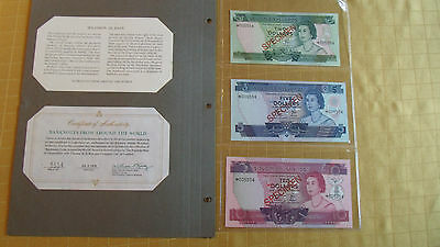 Solomon Islands Nd Complete 3 Specimen Set 1979 005554 Cs1 P5 - 7 Gem Unc