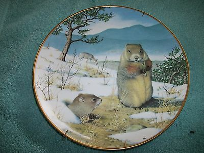 Peter Barrett - The Woodland Year Signature Plate - Woodchucks in the Feb* Thaw
