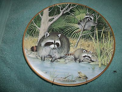 Peter Barrett - The Woodland Year Signature Plate - Curious Raccoons at April*