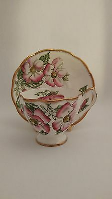 Queen Anne Magnolia Handpainted Cup and Saucer
