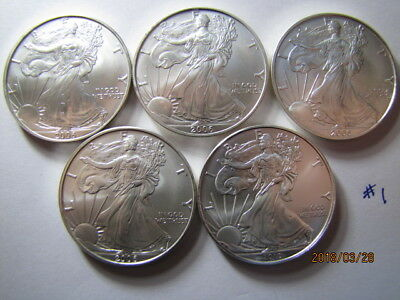 TEN (10)  Random Date 1 oz. American Silver Eagle .999 Silver LOW GRADE QUALITY