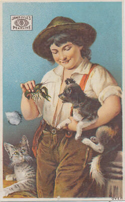 C7978   Victorian Trade Card James Pyles Pearline Soap Boy  And Cat Dog