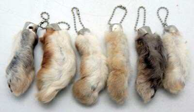 6 Natural Color Lucky RABBITS FOOT (Oryctolagus Cuniculus) Keychains New