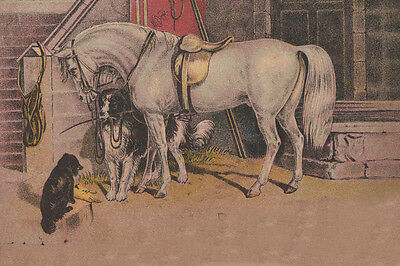 Collie Dog w Puppy & Horse Late 1800's Drawing - New  Large Note Cards