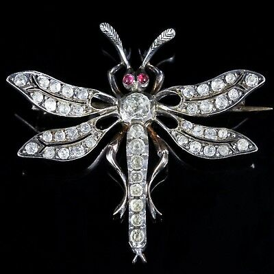 Antique Victorian Paste Dragonfly Brooch Circa 1860 French