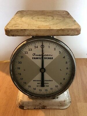 VINTAGE AMERICAN FAMILY KITCHEN SCALE METAL 25 LB. CAPACITY Some Rusty WORKS