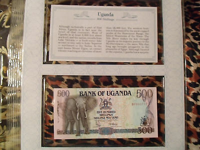 *Most Treasured Banknotes Uganda 500 Shillings 1991 P 33a UNC BG199000