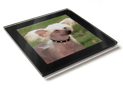 CHINESE CRESTED Dog Puppy Premium Glass Table Coaster with Gift Box