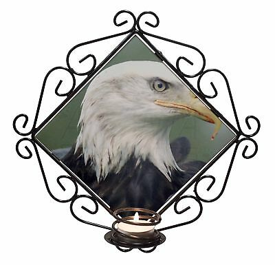 Eagle Bird of Prey Glass Paperweight in Gift Box Christmas Present AB-E6PW