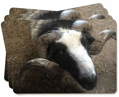 New Goat Face Picture Placemats in Gift Box, GOAT-3P
