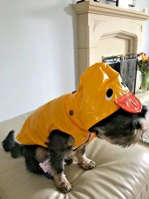 "Small Dog Puppy Duck Rain Mac Waterproof Coat Yellow S 12"" Pups Jacket Hood Toy"