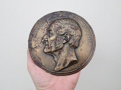 Antique 19th Century Portrait Medal Bronze Steel Wall Plaque Of Carl Palmstedt