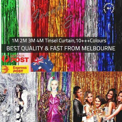 1m Metallic Foil Tinsel Curtain Foil Backdrop Birthday Hens Party Decor AUS