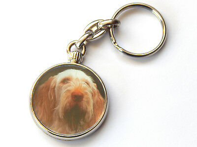 ITALIAN SPINONE Dog Puppy Quality Chrome Keyring Picture Both Sides