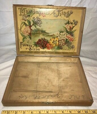 Antique Mandeville King Flower Seed Box Rochester Ny Country Store Display Farm