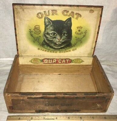 Antique Our Cat Wood Cigar Box Vintage Tobacco Beautiful Kitten Pet Wisconsin