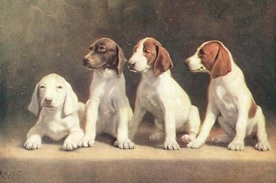 Pointer Puppy Dogs Aritst R. Atkinson 1927 -  LARGE New Blank Note Cards