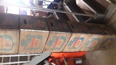 Vintage Wood CANADA DRY Crates [7 are available ]