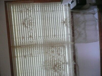 Pair Normandy Net Lace Antique French Curtain Panels - Beautiful!