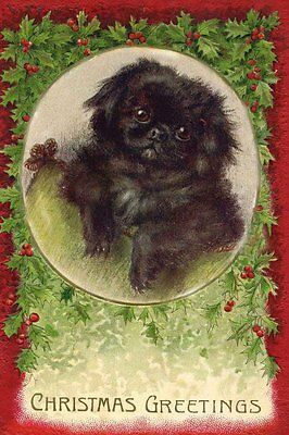 Pekingese Puppy Dog 1920's by Maud West Watson ~ LARGE New Christmas Note Cards