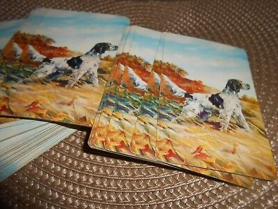 ENGLISH SETTER Playing Cards ~ Complete Deck~ Vintage ~ NICE Collectible!