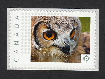 OWL FACE Canada Post Personalized Picture Postage Stamp MNH 2015 [p15/01sn1]