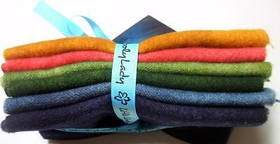 woolylady Herbst in the Air Little livelies 6 Color 100% hand gefärbt Wolle Set