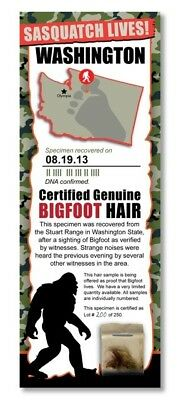 BIGFOOT HAIR SAMPLE - Washington State Park Rare Unique Gift Boy Child Man Cave
