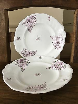 Two Victorian Hand Painted English semi porcelain matching Cake Plates